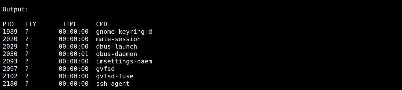 Come usare ps -U in linux