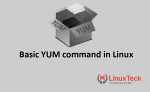 yum command in linux with examples